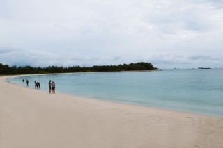 284_lazarus-island