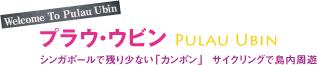 284_shinkenbunroku_purau-ubin_1