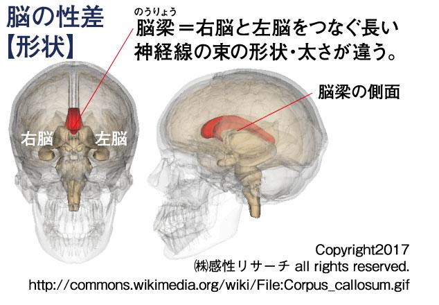 326web_Figure1-r1